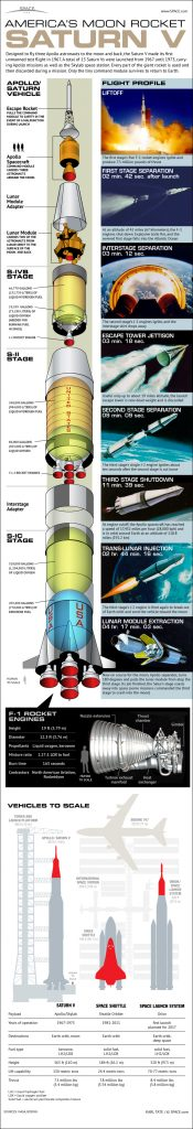 Saturn V Cutaway Infographic - Karl Tate (Space.com)